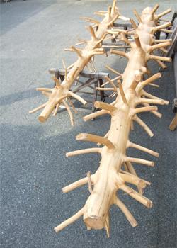 桧枝いっぱい丸太.jpg